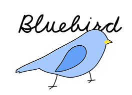 Blue Bird E-Juice by Blue Bird